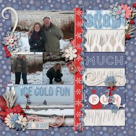 Snow-much-fun-700-399.jpg