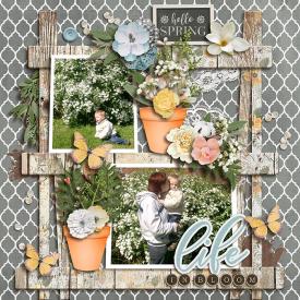 tcot_gardenglory3-.jpg