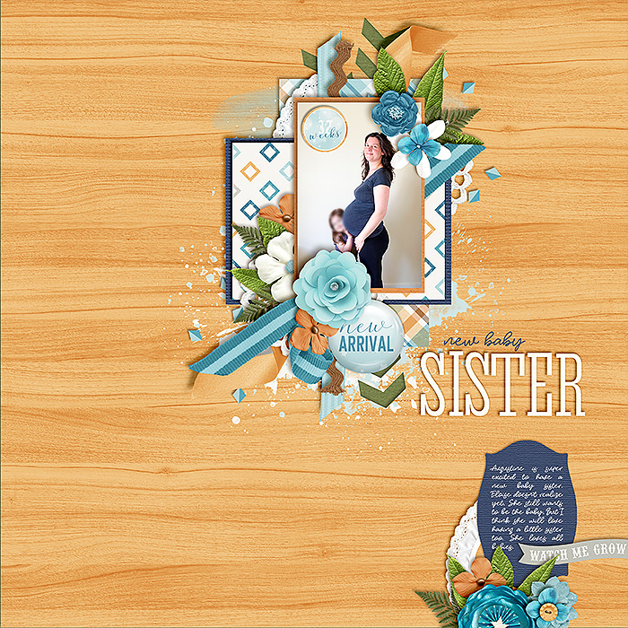 0317-new-baby-sister