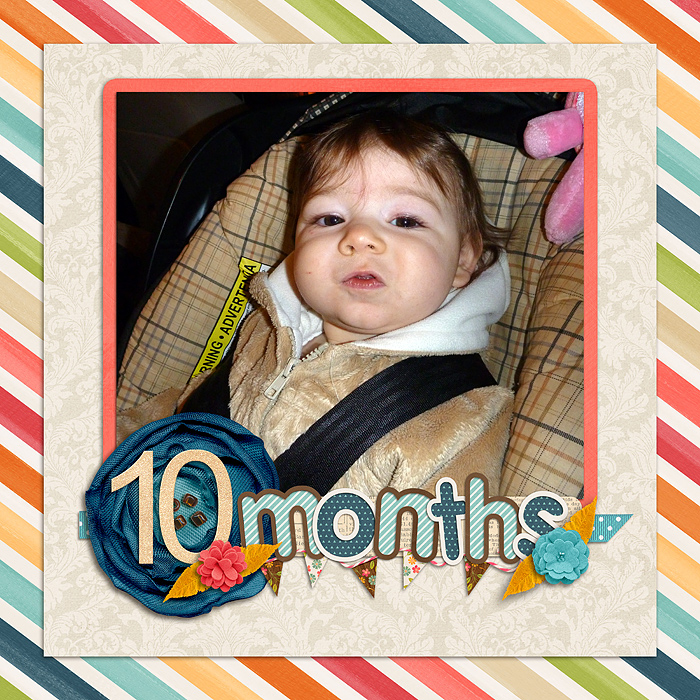 12-2-5-10-months-old
