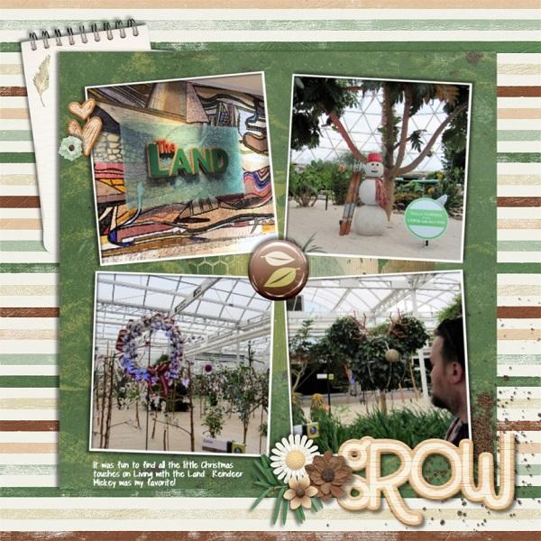1_OLW_Grow