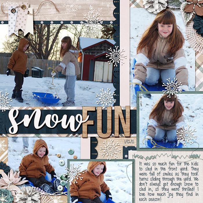 2011_01_12_snowfun