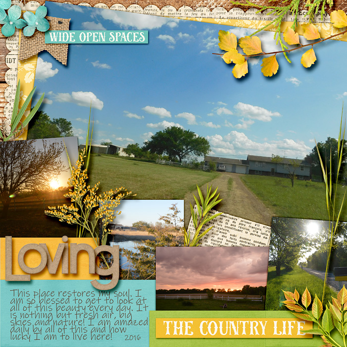 2016_03_00_CountryLife