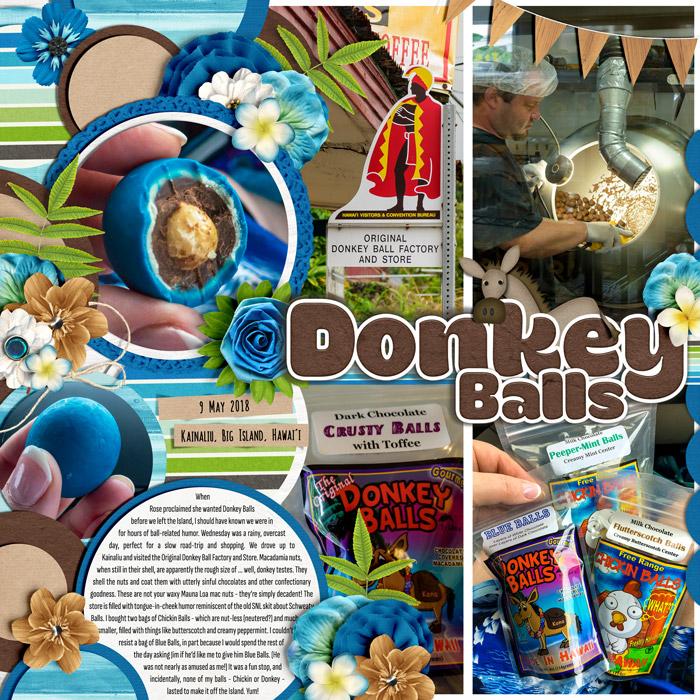 2019-08-Donkey-Balls