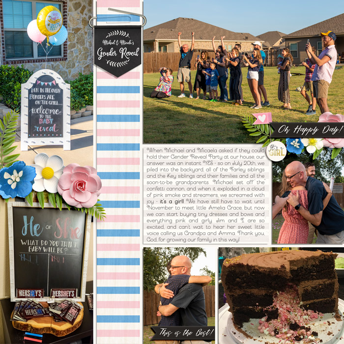 2019-08-Gender-Reveal-Gathering