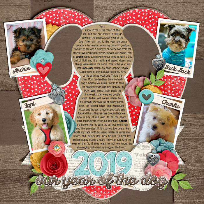 2019-08-Year-of-the-Dog