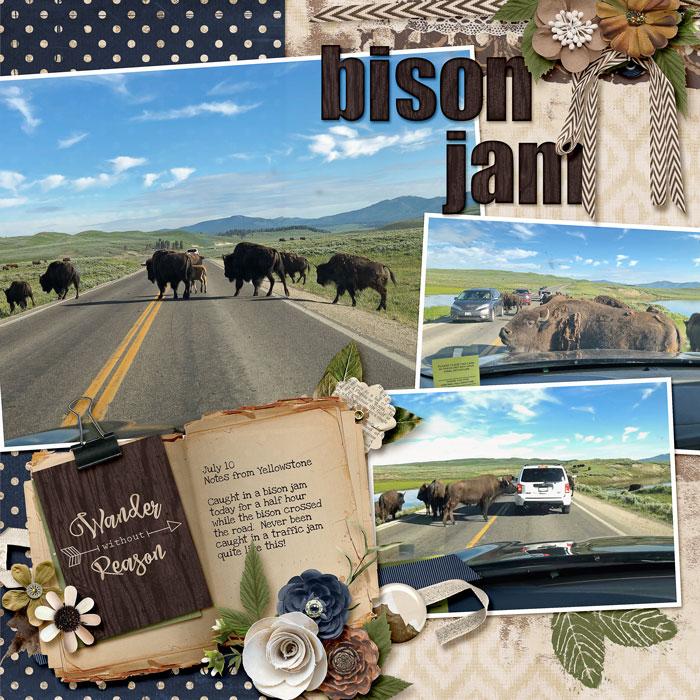 2019-Noah-Bison-Jam-web