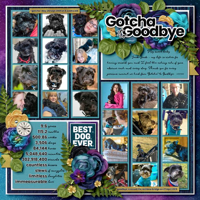 2021-02-Gotcha-to-Goodbye