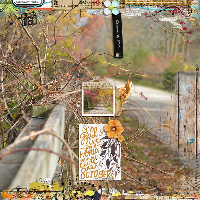 November 2020 Passport to Gratitude: Challenge 7 Photography