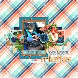 0303-miettes.jpg