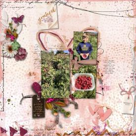 091920_Raspberries_700.jpg