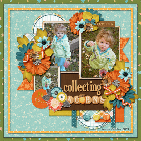 09_10_Collecting_Acorns_-_Kendra.png