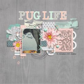 11_Wildcard_Pug-Life.jpg