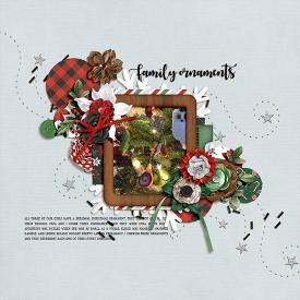 1216-family-ornaments.jpg