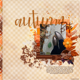 12Composition_bisecting-colour_autumn-boots.jpg