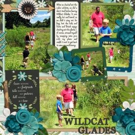 16-7-16-wildcat-glades.jpg