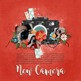 19-7-10-new-camera.jpg