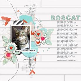 1_OLW_Remberance_Boscat.jpg