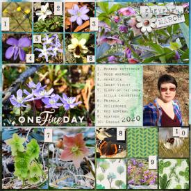 200311_flowers.jpg