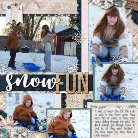 2011_01_12_snowfun.jpg