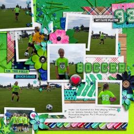2016_8_Soccer_copy.jpg