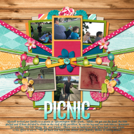 2017-05-22-Russ-picnic.jpg