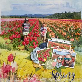 2018_5_Spring.jpg