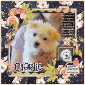 2019-08-Charlie.jpg
