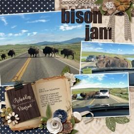 2019-Noah-Bison-Jam-web.jpg