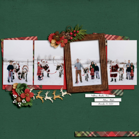 2020-11-15-Reindeer-Farm-web.jpg