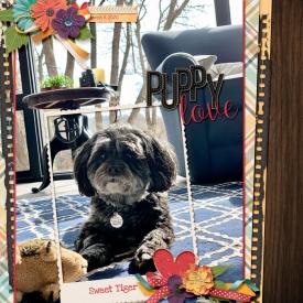 2020-Puppy-Love-web.jpg