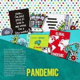2020_Pandemic_Pocket_web.jpg