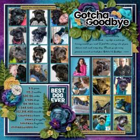 2021-02-Gotcha-to-Goodbye.jpg