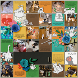 2021-cat-history-very-small-blurry.jpg