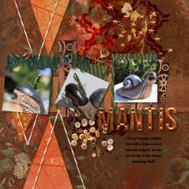 211007_mantis1.jpg