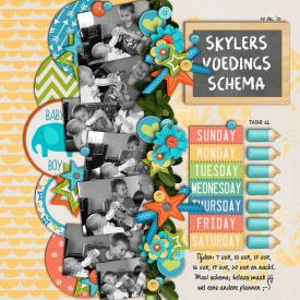 5_Skylers-voedings-schema.jpg