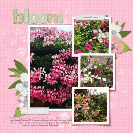 9_Seasonal_Mommas-Garden.jpg