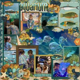 Aquarium_Amboise_gallery_150_page_1_.jpg