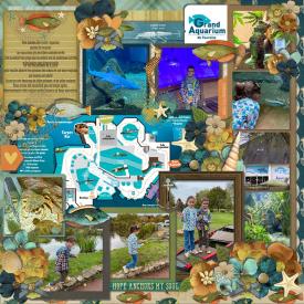 Aquarium_Amboise_gallery_150_page_2_.jpg