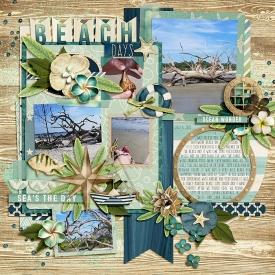 Beach_Days2.jpg