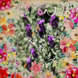 Bloom39.jpg