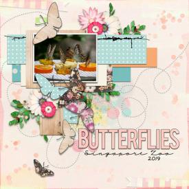 Butterflies-web1.jpg