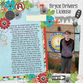 Drivers_License.jpg