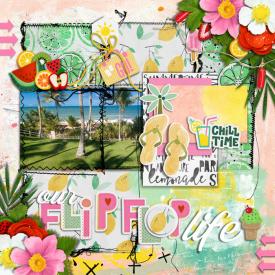 JUNE9FlipFlopLife700.jpg