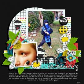 NINJAweb.jpg