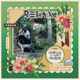 Panda-web.jpg