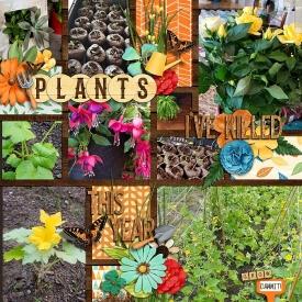 PlantsIveKilled.jpg