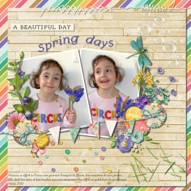 Spring_days_gallery_14_Currently.jpg