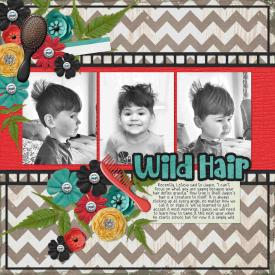Wild_Hair1.jpg