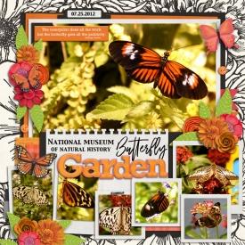butterflygarden12WEB.jpg